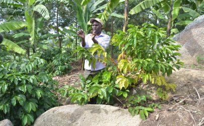 'Bio-slurry is the life line of my farm'
