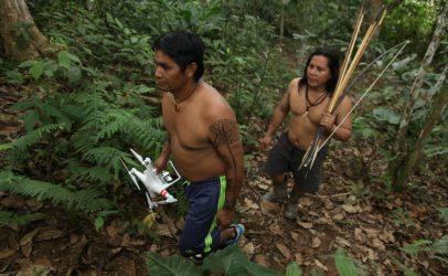 Hivos and Greenpeace receive 14.8 million euros to stop Amazon deforestation