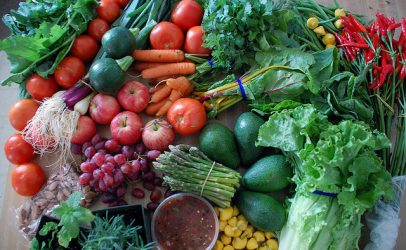 Hivos Recognises Zambian Government Efforts in Promoting Sustainable Diets