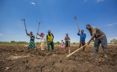 Young People As Drivers of Sustainable Foods in Zambia