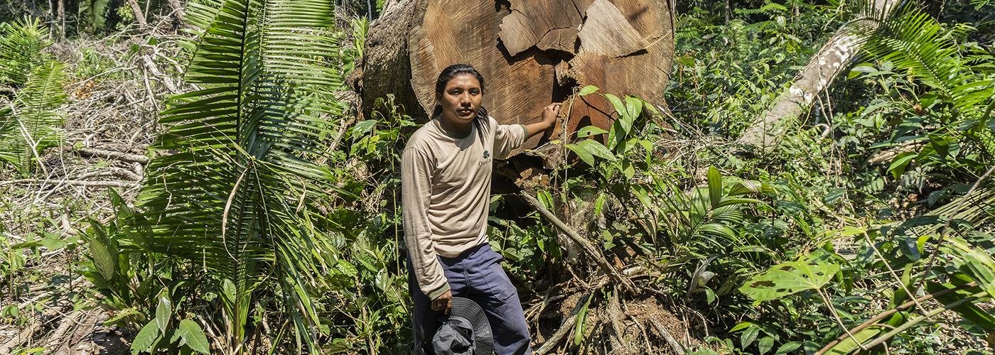 André Karipuna in Karipuna Indigenous Land