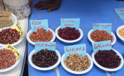 Seed Savers Network makes it easier to access seeds