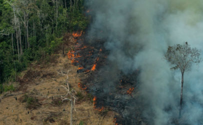 Amazon fires threaten indigenous communities, biodiversity and global climate