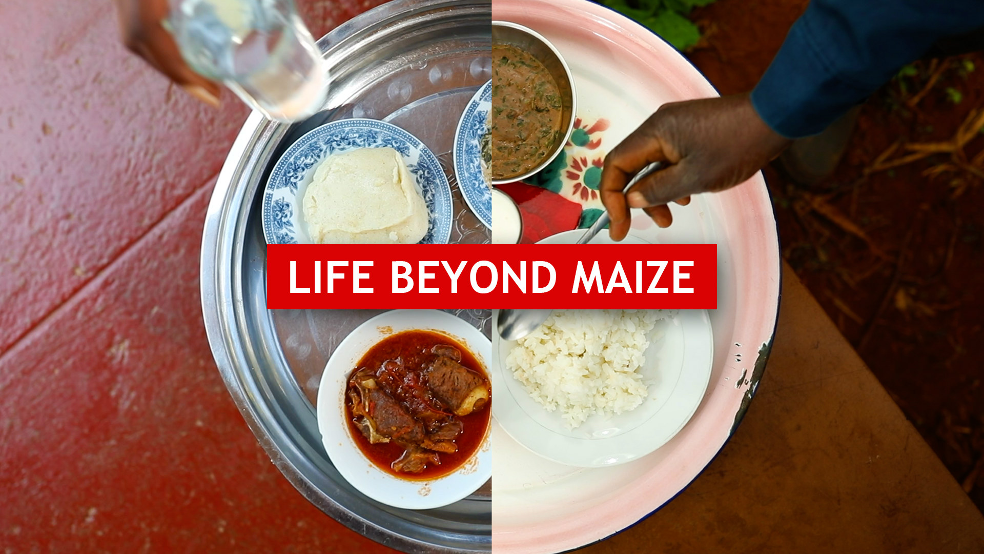 Sustainable Diets in Zambia