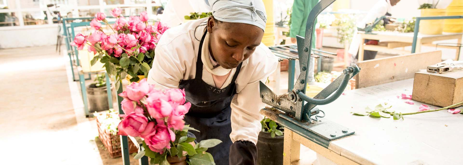A manual for strengthening women's leadership in the horticultural sector