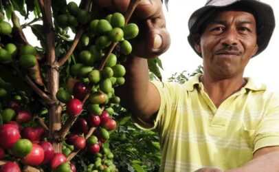 New 2020 Coffee Barometer: Coffee companies must start proving their sustainability impact