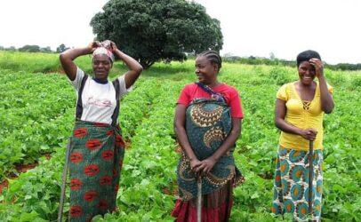 Gender-based violence risk spikes on farms