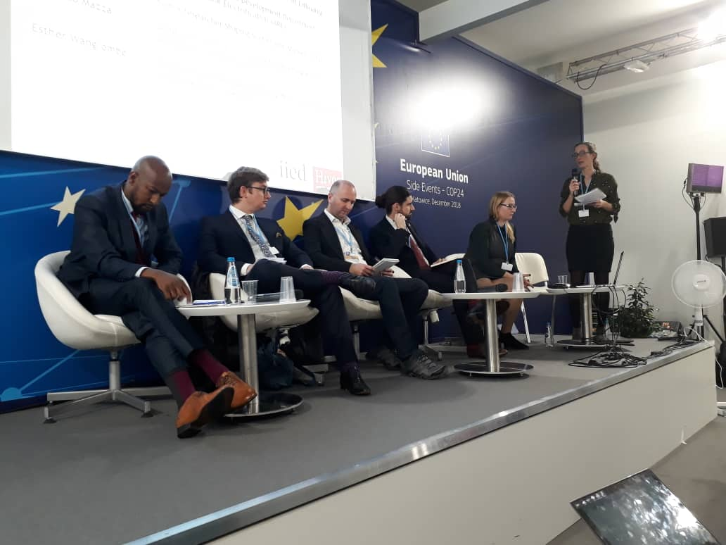 COP25 energy finance session