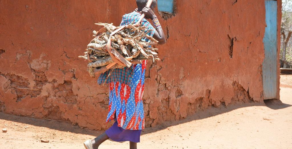 Firewood for cooking Kenya