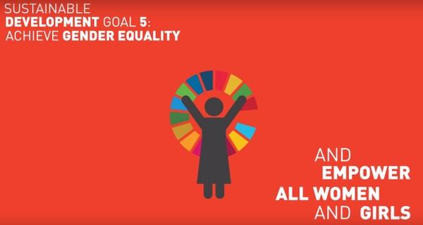 Sustainable Development Goal SDG 5