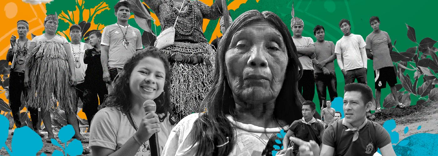 The crucial guardian role of Indigenous Amazon rainforest communities