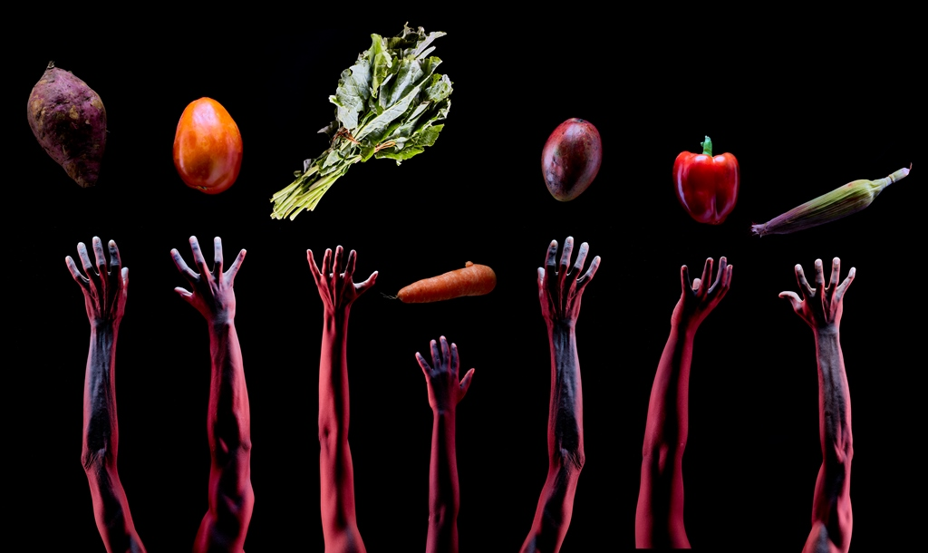 Call for Proposals: Sustainable Diets For All