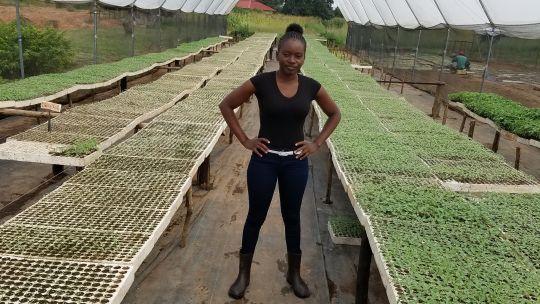Green Entrepreneurship: helping end youth unemployment