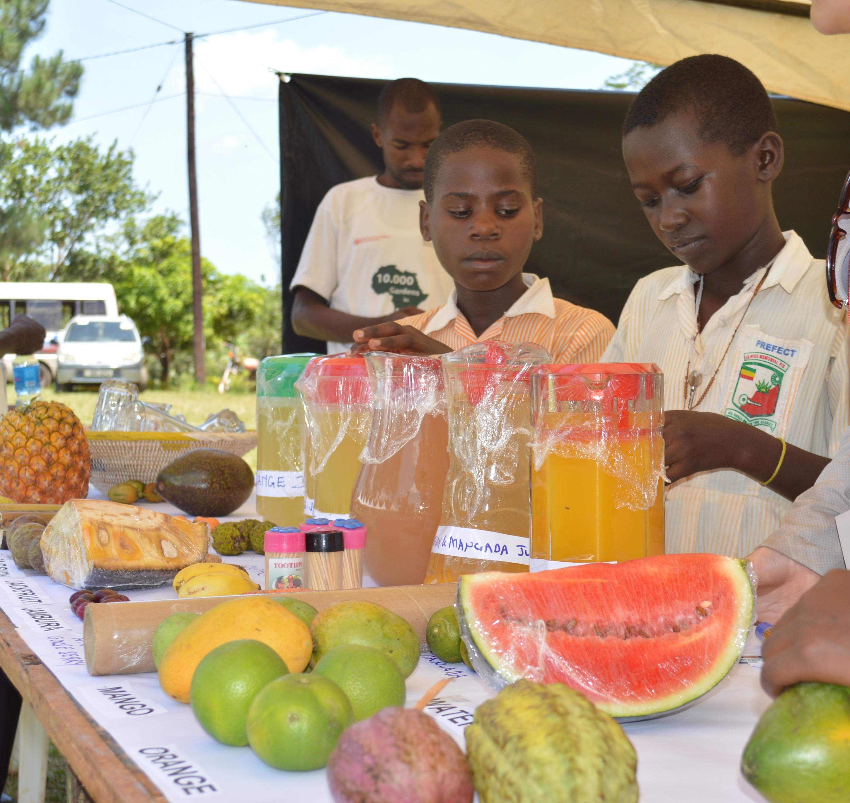 Rediscovering the value of indigenous fruits through Uganda's Fruit