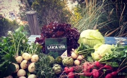 Making urban food policy a reality in Bolivia