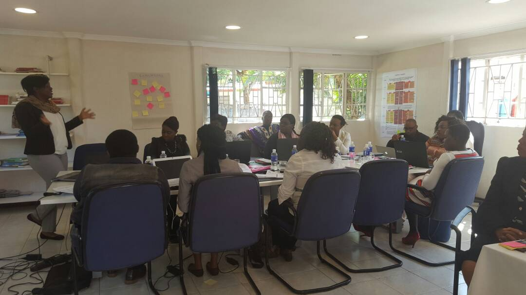 Hivos Southern Africa Conducts Outcome Harvesting for Women Empowered for Leadership partners in Zimbabwe