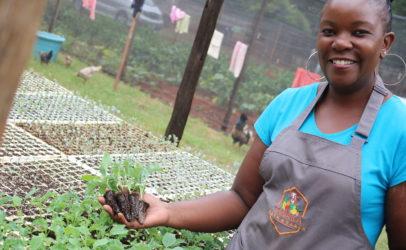 Fifteen women farmers join Food for Export Masterclass 2020