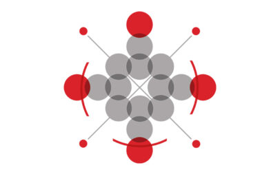 Hivos charts new strategic course